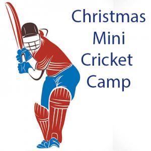 Christmas_Mini_Cricket_Camp - Shop Icon